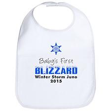 Baby's First Blizzard Juno Bib