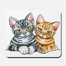 2 American Shorthair Mousepad