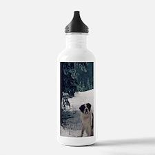 St. Bernard, Molly Water Bottle