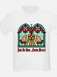 Unique Native american religions T-Shirt