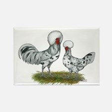 Polish Splash Chickens Magnets
