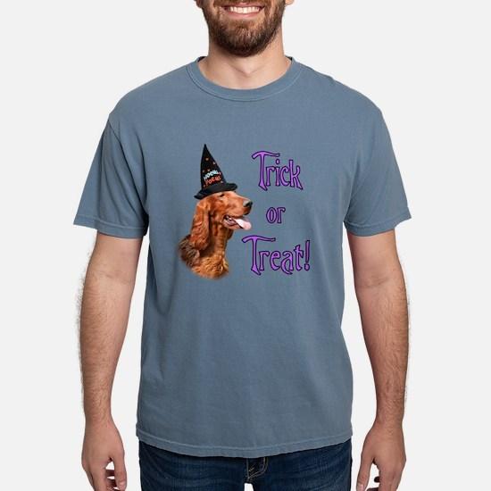 Irish Setter Trick T-Shirt