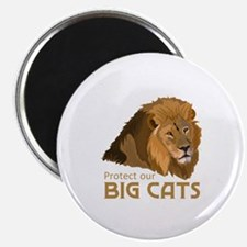 PROTECT OUR BIG CATS Magnets