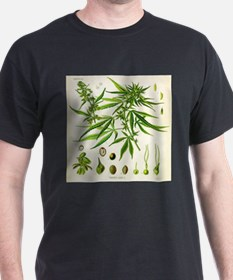 Cannabis or Hemp Illustration T-Shirt