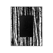 Artistic Birch Trees in black and white Picture Frame