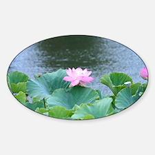 Pink Lotus flower Sticker (Oval)