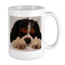 I Am A Cavalier King Charles Spaniel Fan Mugs