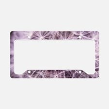 Pink Dandelion License Plate Holder