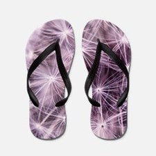 Pink Dandelion Flip Flops