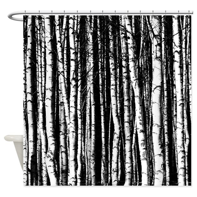 Black and white birch trees shower curtain by vink2