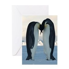 Kissing Penguins Greeting Cards