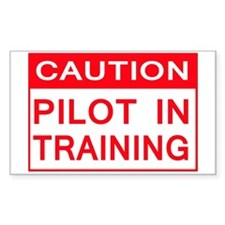 CAUTION PILOT IN TRAINING Decal
