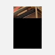 Inside a Piano Rectangle Magnet