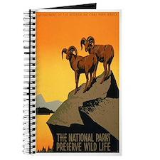1930s Vintage Preserve Wildlife WPA Poster Journal