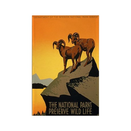 1930s Vintage Preserve Wildlife WPA Poster Rectang