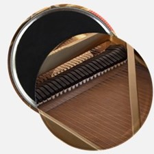 Inside a Piano Magnet