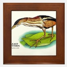 Least Bittern Framed Tile