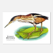 Least Bittern Postcards (Package of 8)