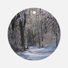 Icy Snow Trail Ornament (Round)