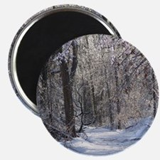 Icy Snow Trail Magnets