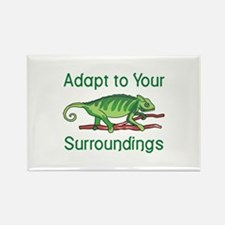 ADAPT TO SURROUNDINGS Magnets