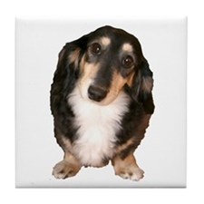 Black Tan Longhaired Dachshund Tile Coaster