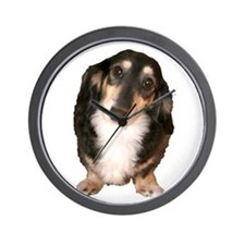 Black Tan Longhaired Dachshund Wall Clock