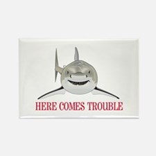 HERE COMES TROUBLE Magnets