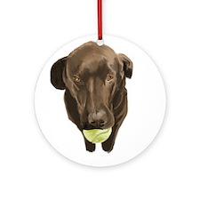 labrador retiever with a tennis ball Ornament (Rou