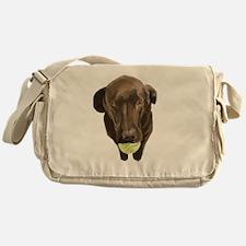 labrador retiever with a tennis ball Messenger Bag