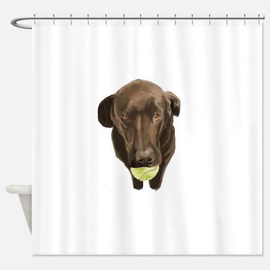 labrador retiever with a tennis ball Shower Curtai