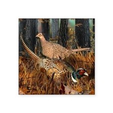"Cute Pheasant Square Sticker 3"" x 3"""