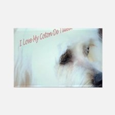 I Love My Coton De Tulear  Rectangle Magnet