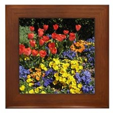 A Burst Of Springtime Framed Tile