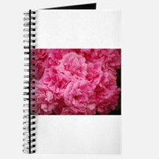 Pale pink roses Journal