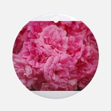 Pale pink roses Ornament (Round)