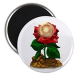 Rose & Universe Magnet