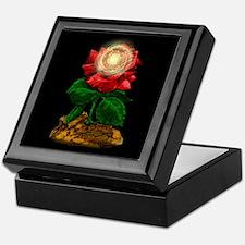 Rose & Universe Keepsake Box