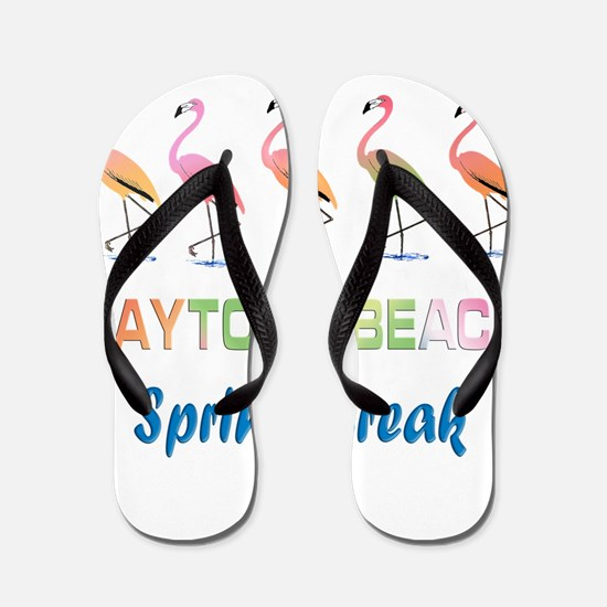 Tropical Flamingos DAYTONA BEACH Spring Flip Flops