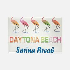 Tropical Flamingos DAYTONA BEACH Spring Br Magnets