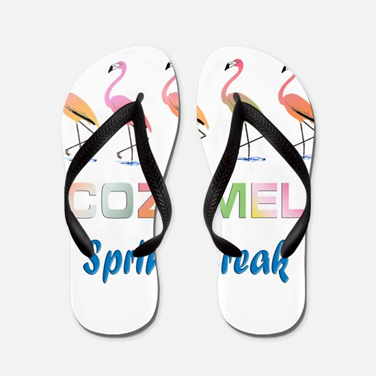 Tropical Flamingos COZUMEL Spring Break Flip Flops