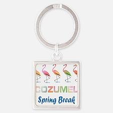 Tropical Flamingos COZUMEL Spring Break Keychains