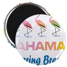 Tropical Flamingos BAHAMAS Spring Break Magnets