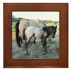 Appy foal Framed Tile