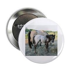Appy foal Button