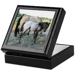 Appy foal Keepsake Box