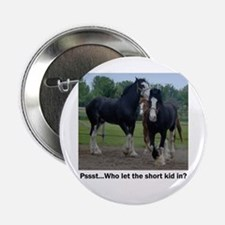 Clydesdale Button