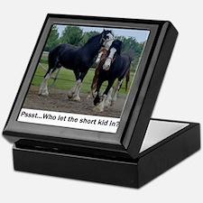Clydesdale Keepsake Box
