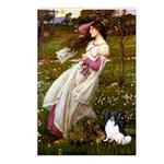 Windflowers & Papillon Postcards (Package of 8)