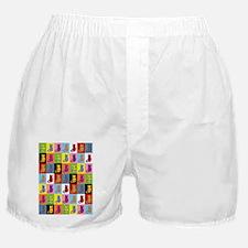 Pop Art Cat Boxer Shorts